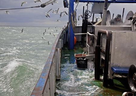 Fotoausstellung über Krabbenfang in der Musikantenkneipe Lütt Matten – Garding