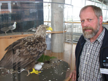 Nationalpark-Zentrum Multimar Wattforum – Neue Vogelausstellung
