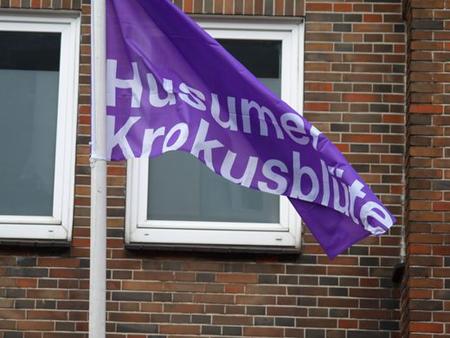 Fotogalerie vom Krokusblütenfest und Verkaufsoffenem Sonntag in Husum 2013