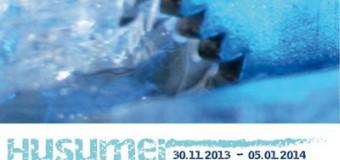 Eiszeit in Husum startet mit eigenem Song in die Wintersaison
