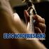 Vorwort zum neuen Blog für Nordfriesland