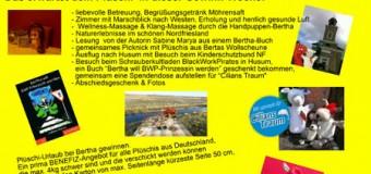 Deichschaf Bertha geht für ein Benefiz-Projekt auf Kreuzfahrt-Urlaub