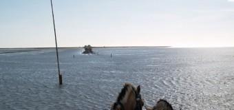 Weltnaturerbe Wattenmeer feiert das fünfjährige Bestehen in Breklum