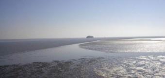 Dänemarks Wattenmeer komplettiert Weltnaturerbe