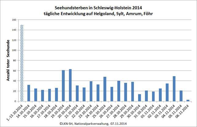 Seehundsterben an der nordfriesischen Küste dauert an