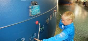 Multimar Wattforum lädt Touristiker und Lehrkräfte zum kostenfreien Entdecken ein