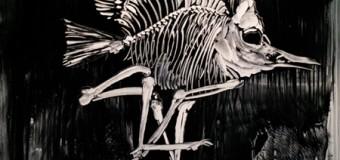 Tierisch anders! Ausstellung in der KunstBude 2.0