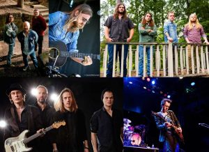 Foto: Collage Presse alle Bands