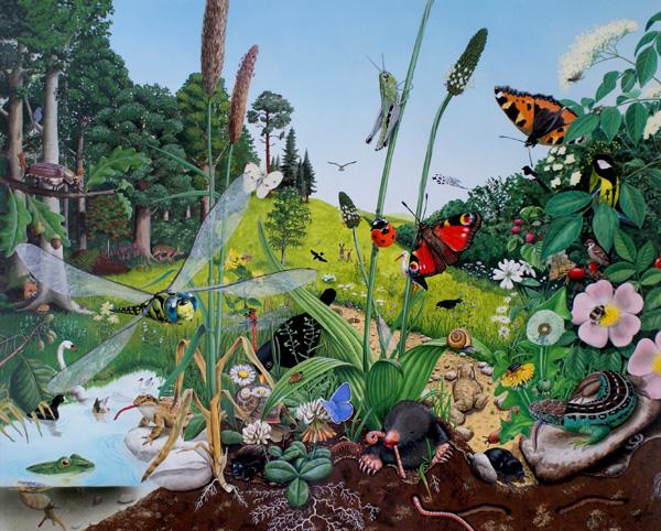 """Aktionsnachmittag zum Thema """"Naturwissenschaftliche Illustrationen"""" und Advent im Haus Peters"""