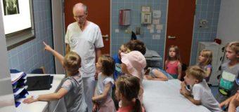 10. Kinder-Uni Föhr: Kleine Forscher erobern die Nordseeinsel