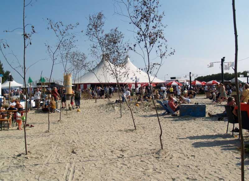 Tønder Festival 2020: Das Programm nimmt Form an - Nordfriesland Online