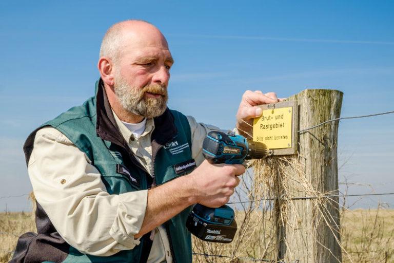 Nationalpark Wattenmeer: Vorbereitungen für die Brutzeit im Nationalpark