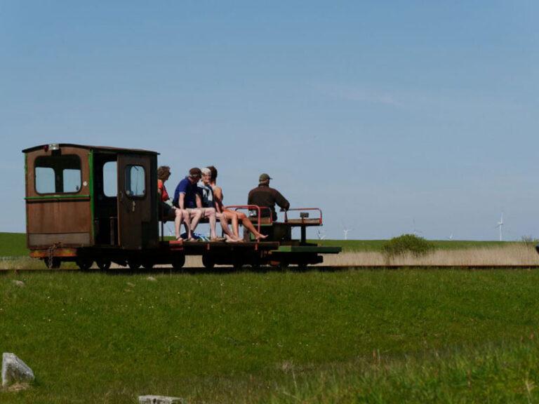 Nordfriesland ist nicht nur bei Urlaubern beliebt: Wohnen auf der Eiderstedter Halbinsel