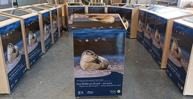 Nationalpark Wattenmeer: Neue Infoeinheiten zu Seehunden