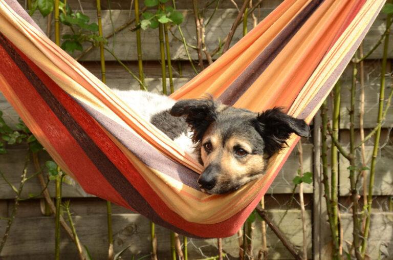 Richtig Entspannen im eigenen Garten